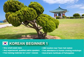 Korean Beginner 1 copy