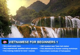 Affordable Vietnamese Beginner 1 Course in Sydney with small classes! Learn basic conversational proficiency over the 10-week course with free materials.
