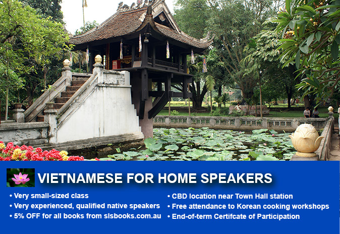 vietnamese reading and writing for home speakers