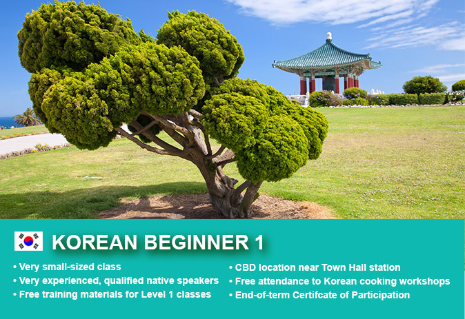 Affordable Korean Beginner 1 Course in Sydney CBD with small classes! Learn basic conversational proficiency over the 10-week course with free materials.