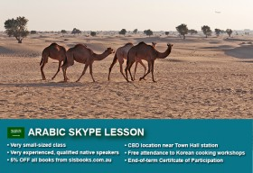 Improve your Arabic language skills with tailored private tutorials via Skype. Different durations and flexible times are available to suit you.
