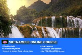 1- Vietnamese Online Course